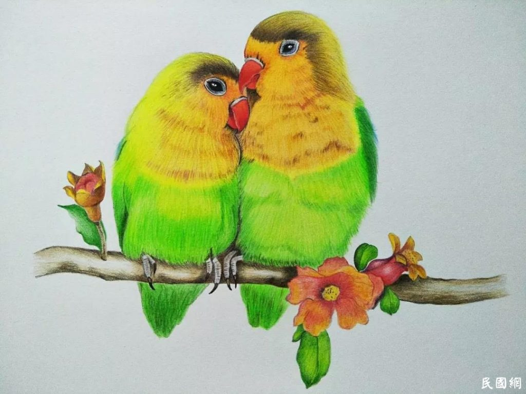 我可爱的《飞鸟集》